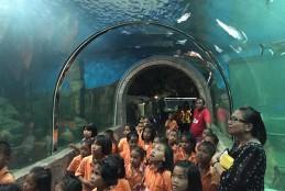 Aquarium of Sisaket