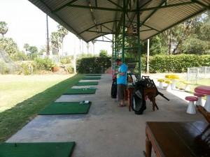 Pk Golf
