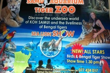 Koh Samui Aquarium and Tiger Zoo